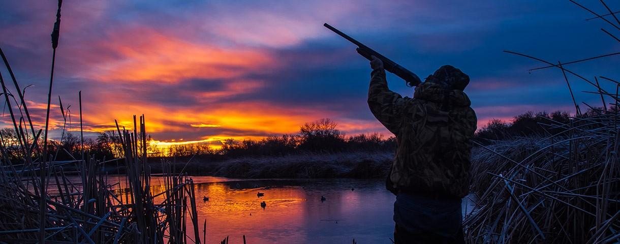 HC Hunting